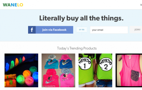Wanelo: A New Website That Lets People Buy Products Online