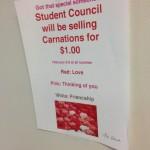 Carnation sales
