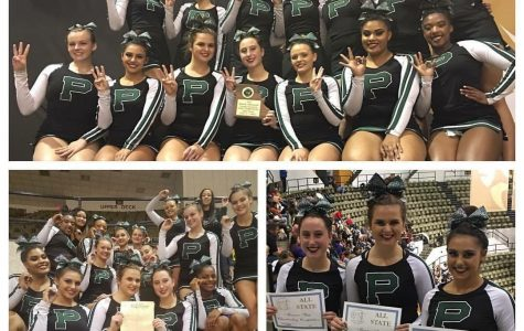 Cheerleaders place 3rd at state competition