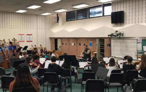 Spring orchestra concert will be held on May 10