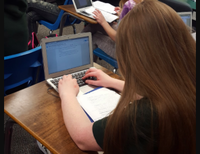 Student works on a research paper about the benefits of being plant-based