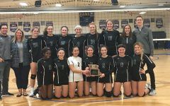 Girls' volleyball season ends with high achievements