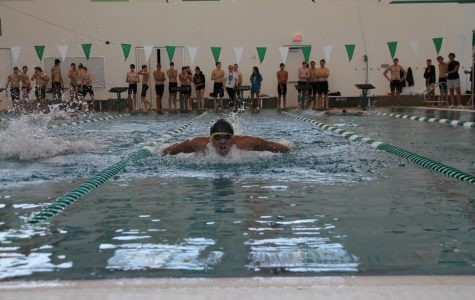 Diving into Fall Sports