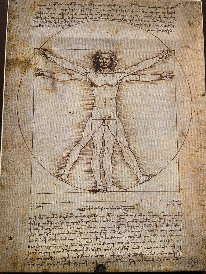 Da+Vinci%27s+anatomy+of+a+human+