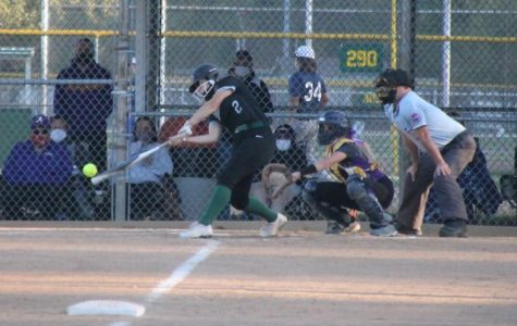 Softball Swings Back Into Gear