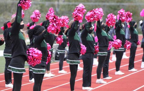 Cheer Returns to Pattonville
