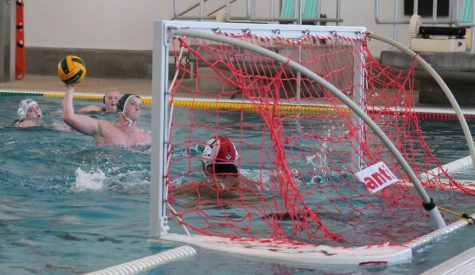 Water Polo Keeps on Swimming